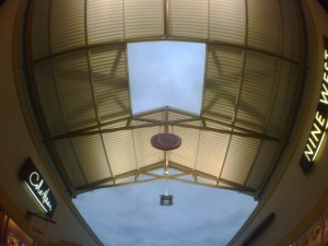 Phone Camera with Fisheye lens
