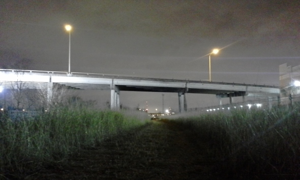 The Overpass Houston